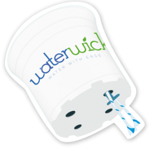 Waterwick