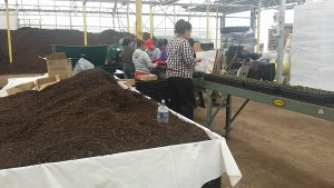 Hampshire Farms - Reliable Labor